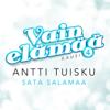 Antti Tuisku - Sata salamaa (Vain elämää kausi 4) artwork