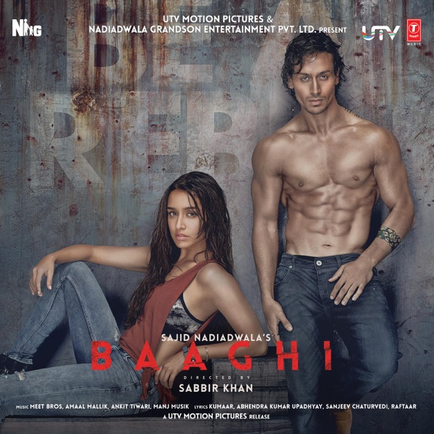 Pehli Mulakat Mp3 By Rohanpreet Singh: Baaghi (Original Motion Picture Soundtrack)