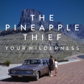 The Pineapple Thief - Tear You Up