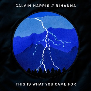 CALVIN HARRIS + RIHANNA - This is what you came for