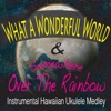 What a Wonderful World & Somewhere Over the Rainbow [Instrumental Hawaiian Ukulele Medley] - Single - John Story