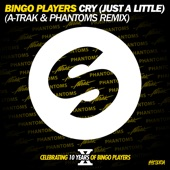 Cry (Just a Little) [A-Trak and Phantoms Remix] - Single