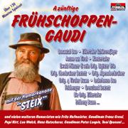 A zünftige Frühschoppen-Gaudi: Folge 1 - Various Artists - Various Artists