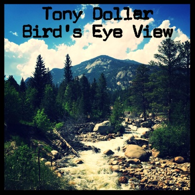 Bird's Eye View - Single - Tony Dollar album