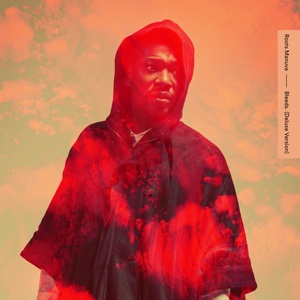 Bleeds (Deluxe Version) - Roots Manuva - Roots Manuva