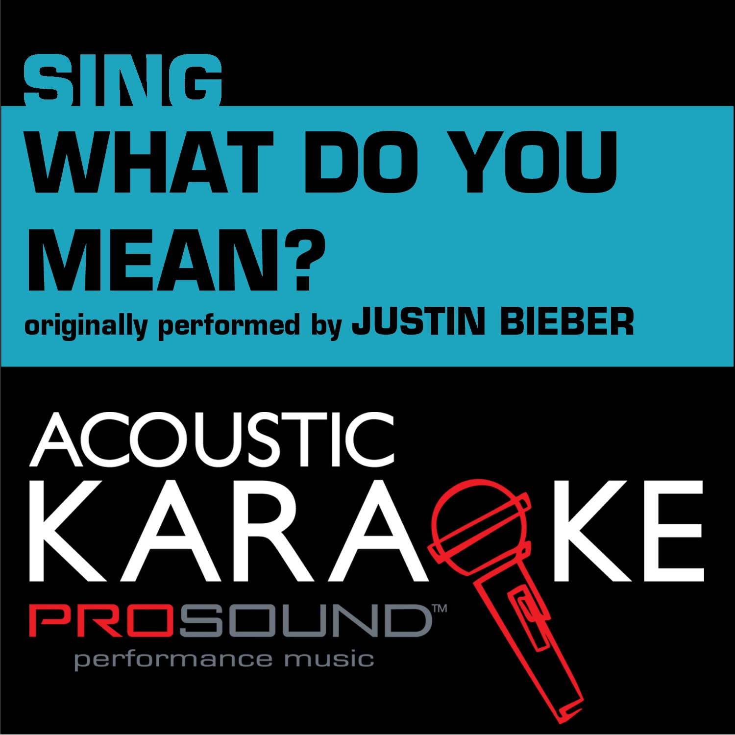 What Do You Mean (Originally Performed by Justin Bieber) [Female Karaoke Version] - Single