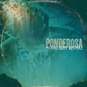 Ponderosa - Pistolier