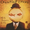 This Desert Life, Counting Crows