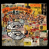 The Pine Hill Haints - Rattle Them Bones