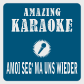 Amoi seg' ma uns wieder (Karaoke Version) [Originally Performed By Andreas Gabalier]