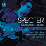 Dave Specter - Chicago Style