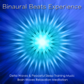 Binaural Beats Experience: Delta Waves & Sleep Training Music, Brain Waves & Relaxation Meditation