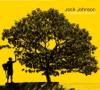 In Between Dreams (Bonus Track Version) - Jack Johnson