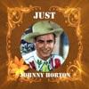 Icon Just Johnny Horton