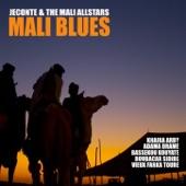 JeConte & The Mali All Stars - Wariko