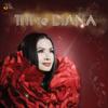 Titi DJ - Jangan Biarkan (feat. Diana Nasution) artwork