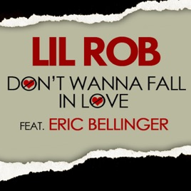 i don t want to fall in love song
