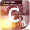 If Only feat Adrian Delgado Single