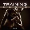 Training Music 2013 - Various Artists