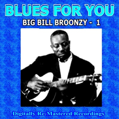 Blues For You - Big Bill Broonzy - 1 - Big Bill Broonzy