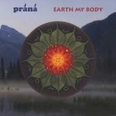 Earth My Body artwork