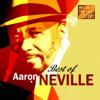 Masters of the Last Century: Best of Aaron Neville - Aaron Neville
