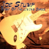 Joe Stump - Heavy Handed