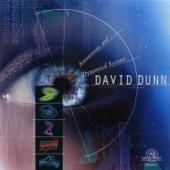 David Dunn - Nine Strange Attractors
