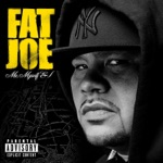 Fat Joe & Lil Wayne - Make It Rain