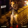 Jaz Dhami - Zulfa (feat. Dr. Zeus, Shortie, Fateh & Yasmine) artwork