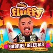 Aloha Fluffy-Gabriel Iglesias