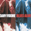 Gary Moore - Blues Alive  artwork