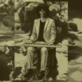 Shintaro Sakamoto - This World Should Be More Wonderful