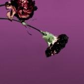 You & I (Nobody In the World) [R3hab Remix - Radio Edit] - Single