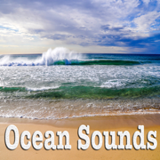 Ocean Sounds - Nature Sounds - Nature Sounds