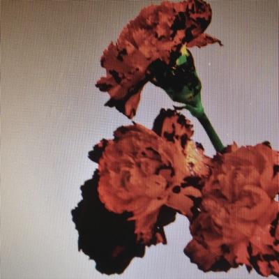 Made To Love (Remixes) - Single - John Legend