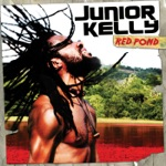 Junior Kelly - Treacherous Waters