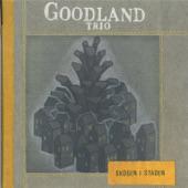Goodland Trio - Falun