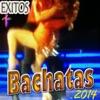 Éxitos de Bachatas (2014)