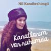 Nil Karaibrahimgil - Kanatlarım Var Ruhumda artwork