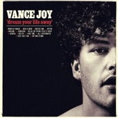 Vance Joy - Mess Is Mine