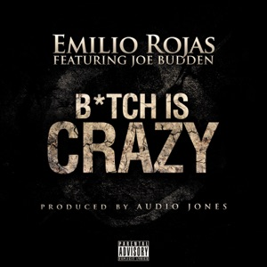 B*tch is Crazy (feat. Joe Budden) - Single Mp3 Download