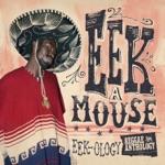Eek-A-Mouse - Tek Wey