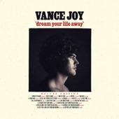 Vance Joy - Fire and the Flood