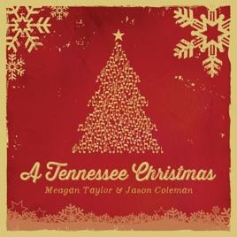 a tennessee christmas meagan taylor jason coleman - Tennessee Christmas