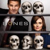 Bones, Season 4 - Synopsis and Reviews