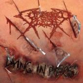 Cutterred Flesh - Enslave the Dead
