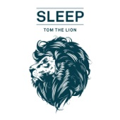 Tom The Lion - Ragdoll