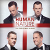 Human Nature - The Christmas Album artwork