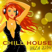 Chill House Ibiza 2014 Erotic Chillout Lounge at Rio del Mar